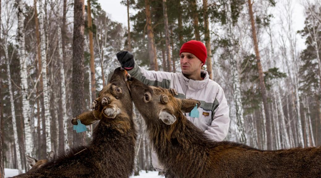 Северный Урал. Культурная программа. Часть 2