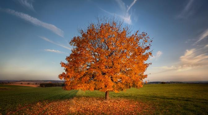 Свет и цвет: основы основ