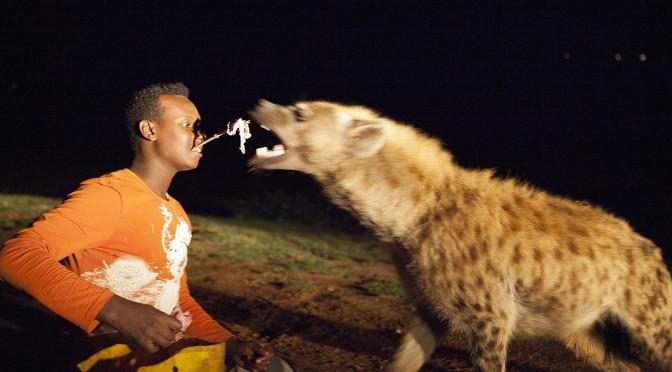 Лучшие фотографии животных со всего мира за прошедшую неделю