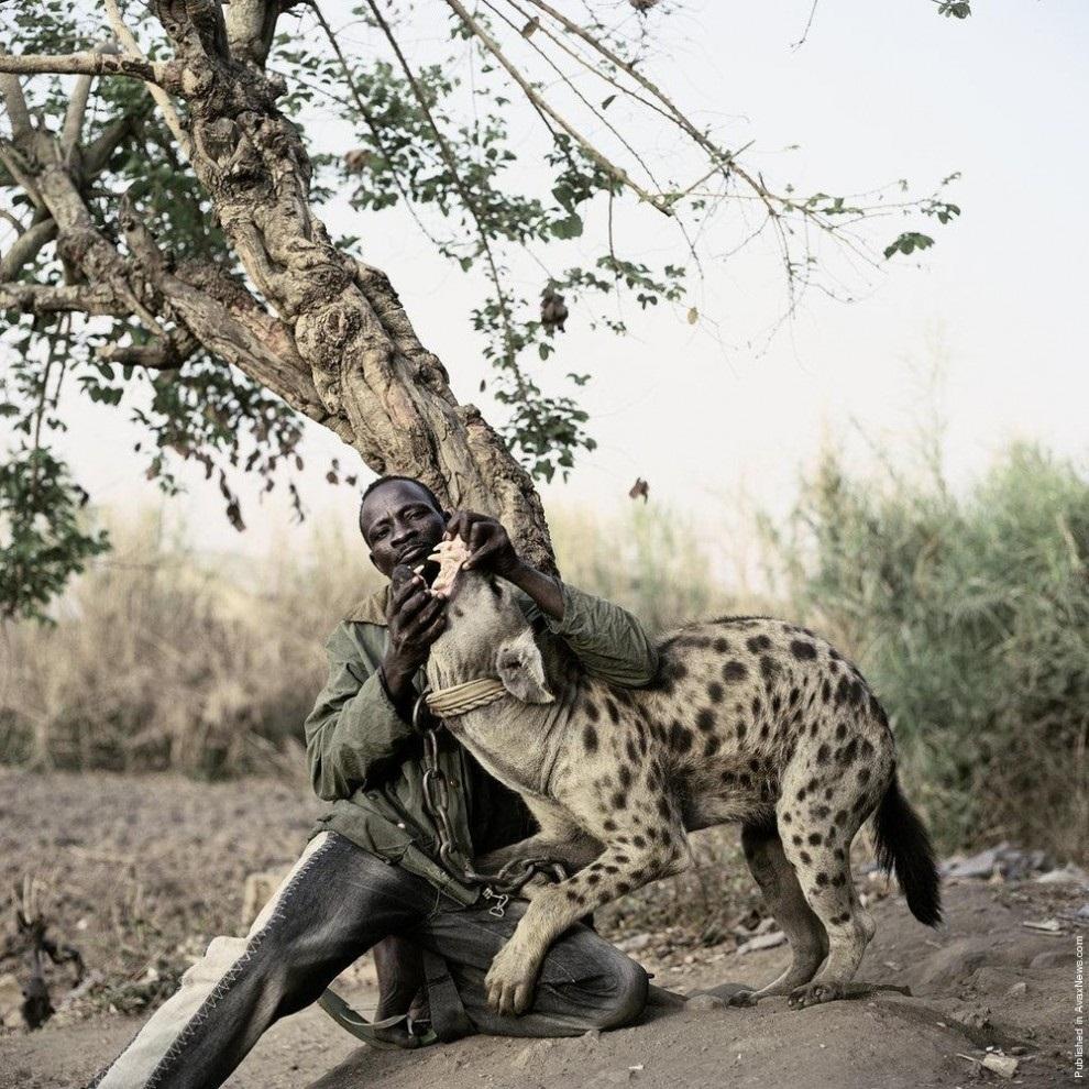 Что дикие африканцы надевают себе на член 15 фотография