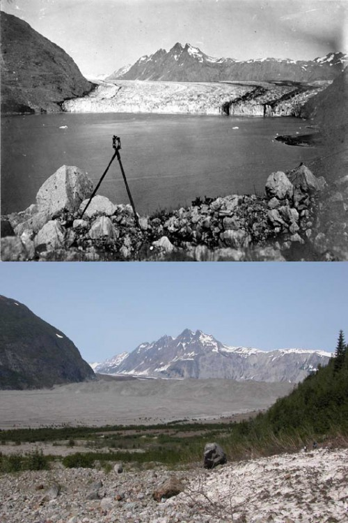 Carroll Glacier, Alaska, 1906 and 2004