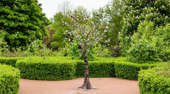 Сказочный сад в Симферополе